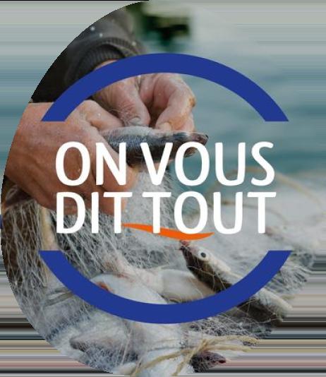 Surimi poissons sauvages